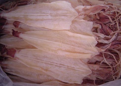 Cách chọn mực khô ngon - Hồn Việt Store