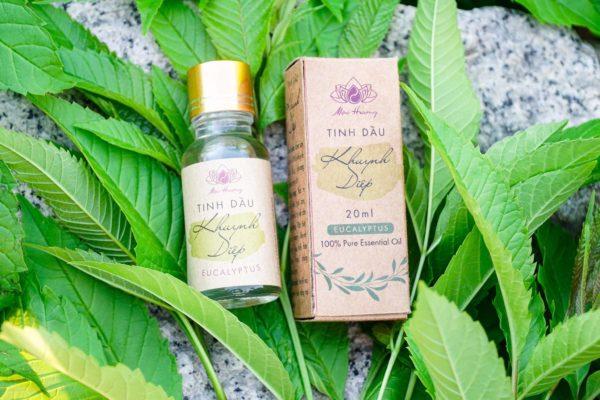 TINH DẦU KHUYNH DIỆP | 20ml - Hồn Việt Store